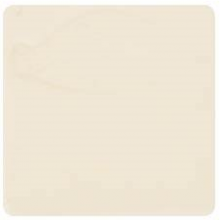 Northcote Earthenware EG363 Clear Matt Brush On Glaze 500mL